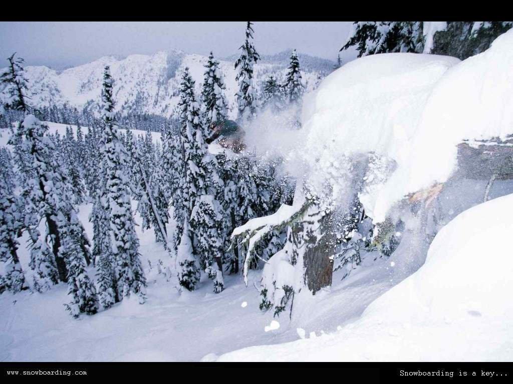 Снежные лавины (фотоподборка) 20фото